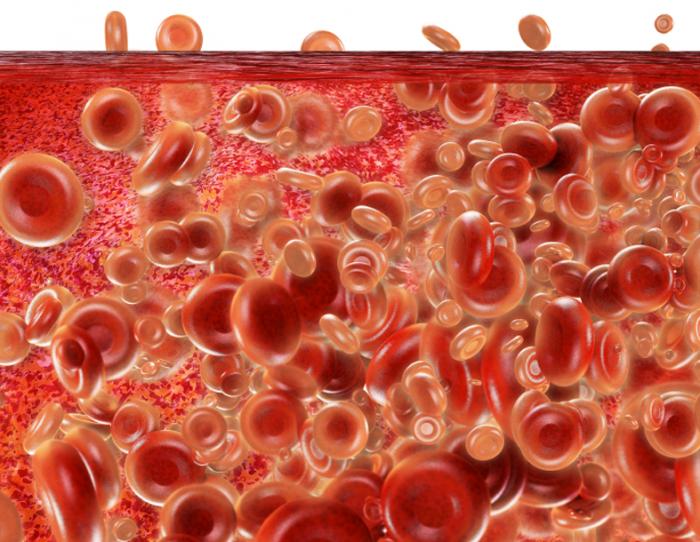 tế bào máu