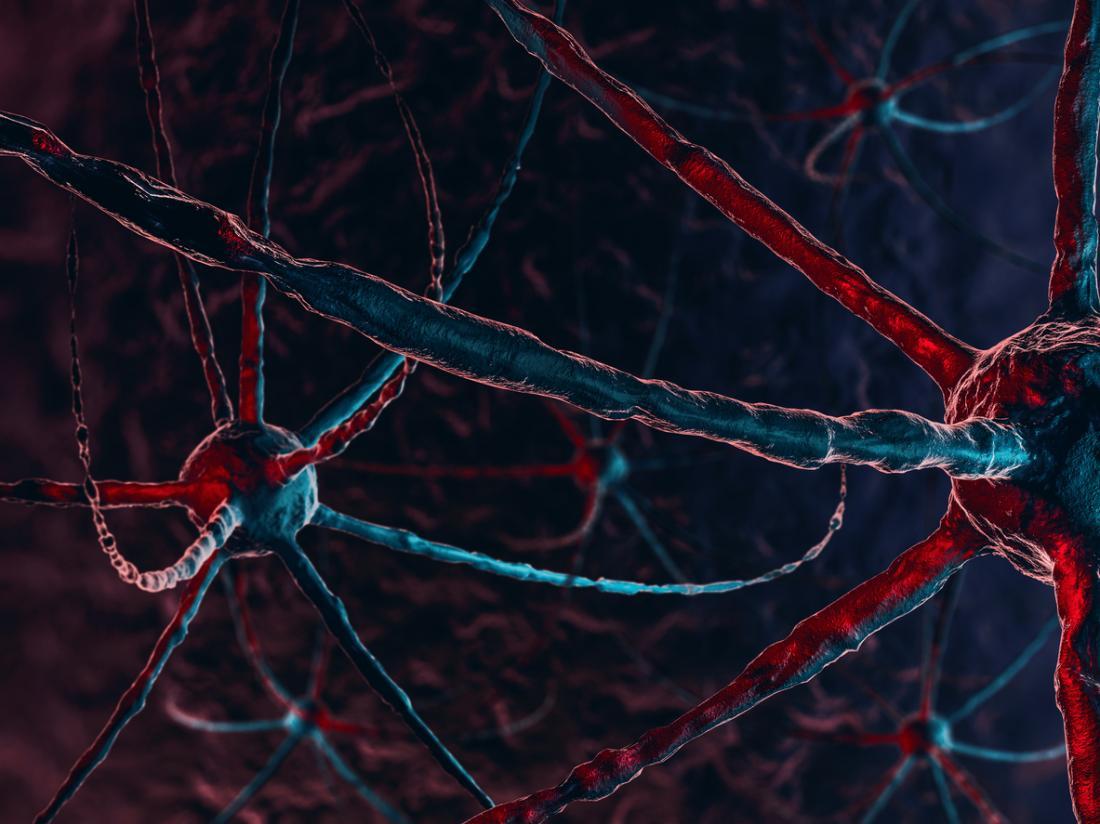 neurônios escuros