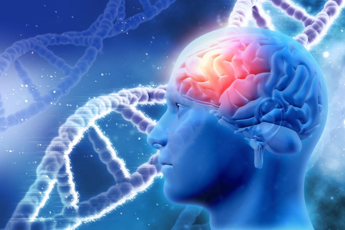 mózg i nici DNA