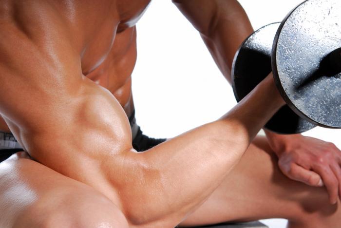 Bir vücut geliştirme adamın kolu.