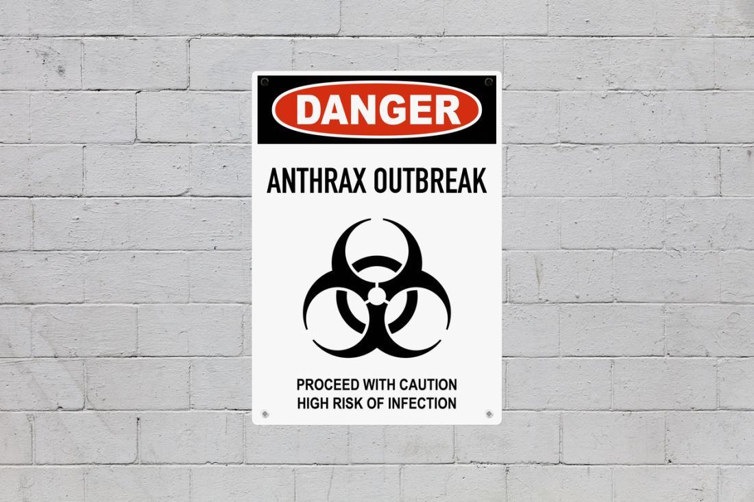 O antraz pode ser usado como uma arma de bioterrorismo porque é fácil de produzir.