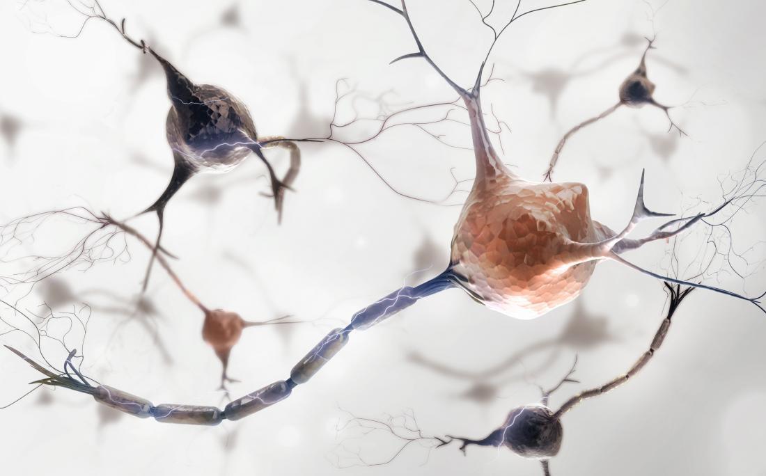 tế bào thần kinh với sợi trục được bọc trong myelin