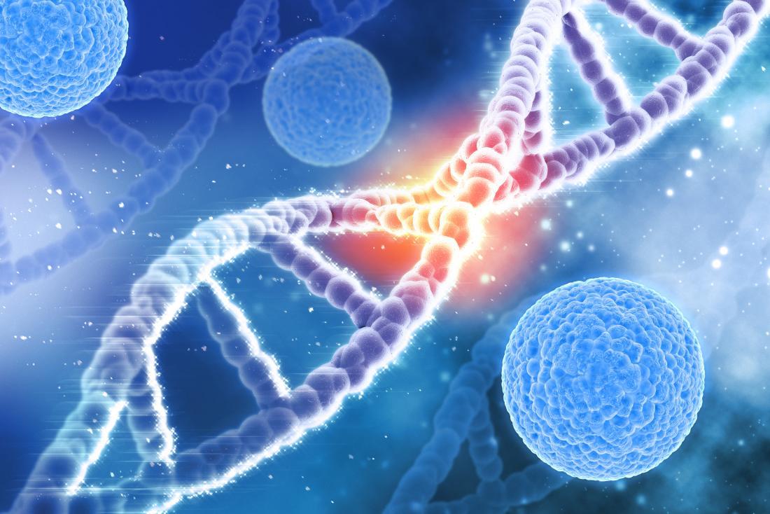 filo del DNA