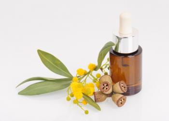 Uma garrafa de óleo de eucalipto com algumas folhas.