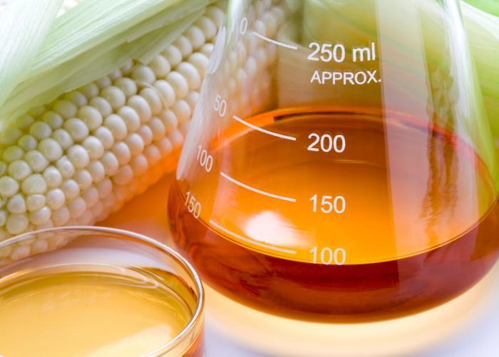 Xarope de milho em um frasco cônico ao lado de um pedaço de espiga de milho