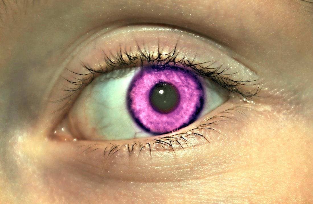 La genèse d'Alexandrie montrée à travers l'image de l'oeil avec un faux iris violet.