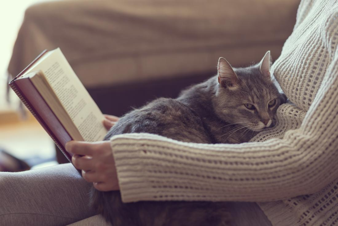 Gato no colo da mulher enquanto ela lê. Possíveis alergias a gatos