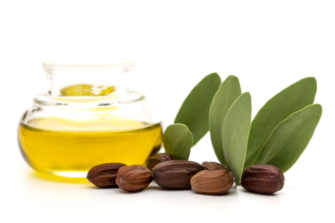 Jojobaöl, Samen und Blätter