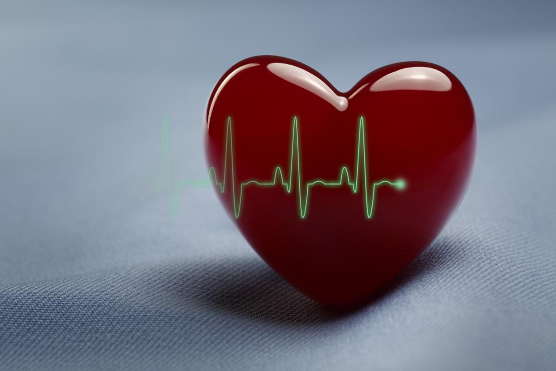 model serca z wykresu EKG