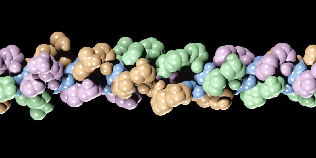Collagen có cấu trúc chắc chắn. Gram-cho-gram, một loại mạnh hơn thép.