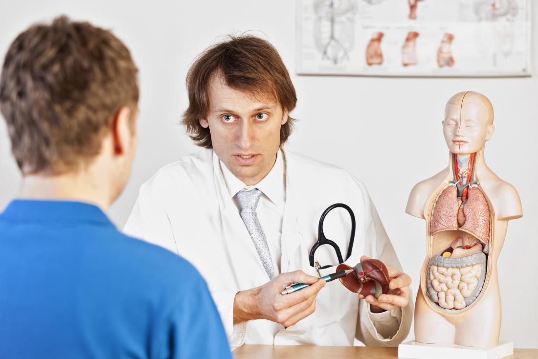 医者は、解剖学的モデルを用いて患者に肝疾患を説明する。