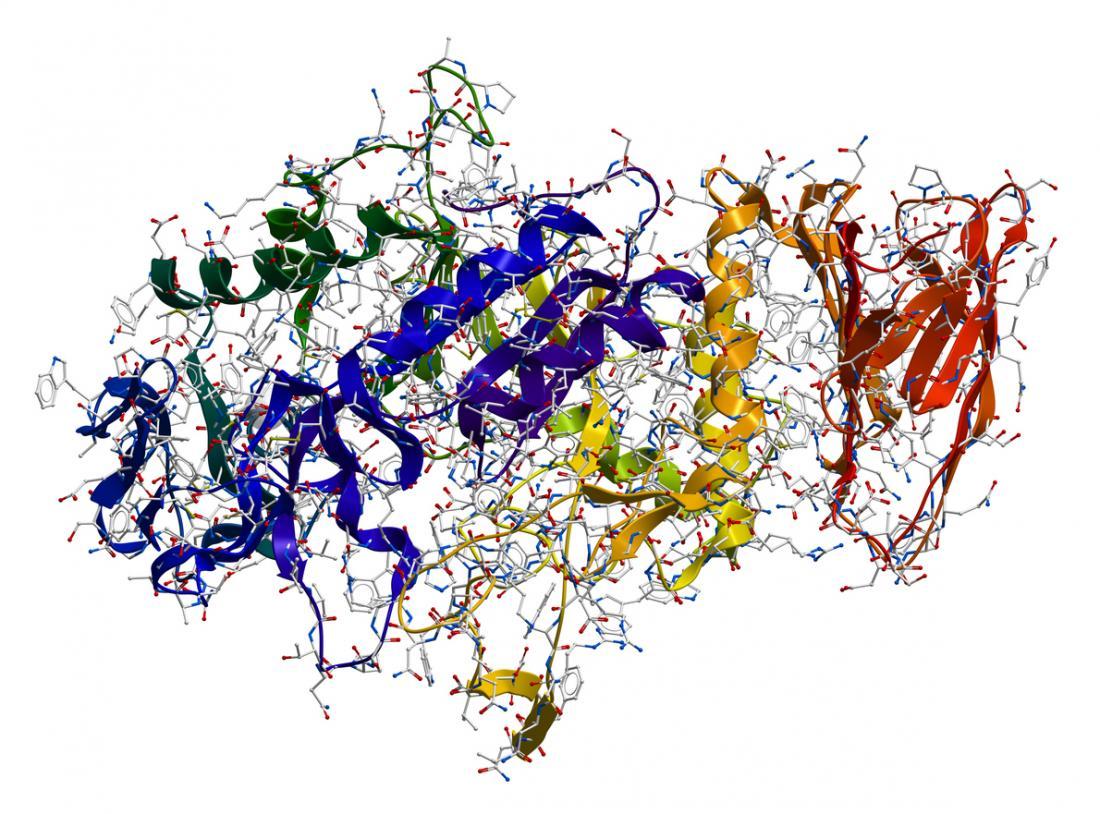 Enzyme amylaza Alpha