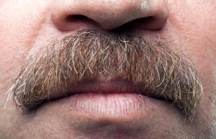 [Gros bouche mâle avec moustache]