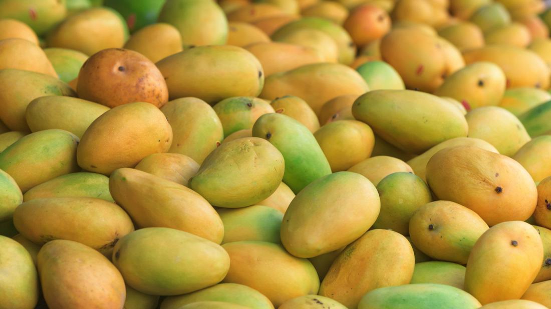 Un tas de mangues