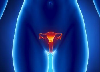 Hình ảnh của các cơ quan sinh sản nữ.