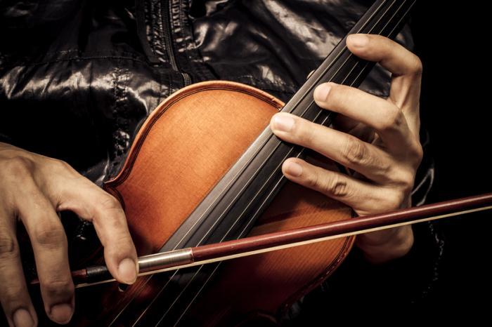 [violinista]