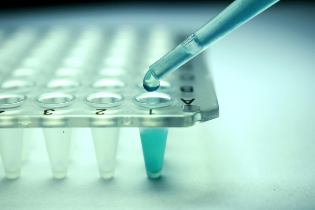 Stammzellenforschung hautnah.