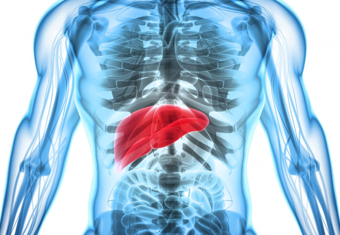 Hepatosplenomegalie demonstriert durch 3D-Darstellung von Körper mit Live hervorgehoben.