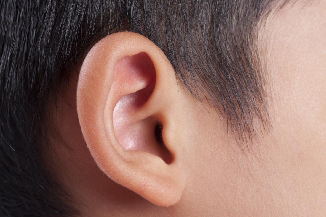 Close up Bild des Ohres