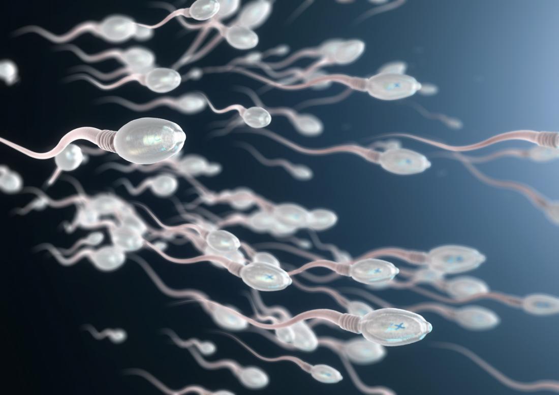 Imagem 3D de espermatozóides.