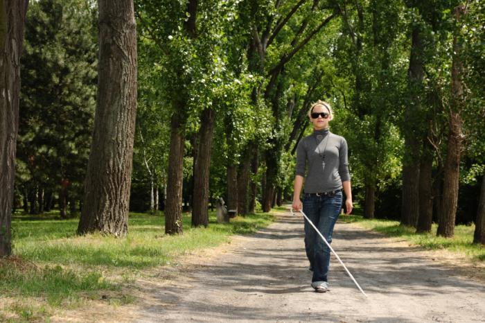Femme aveugle marchant dans un bois avec une canne.