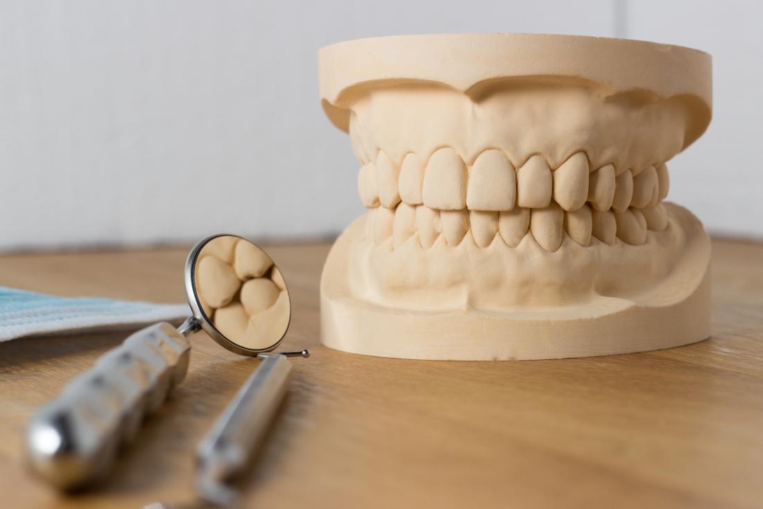 Le modèle des dents du dentiste avec des outils en plus.