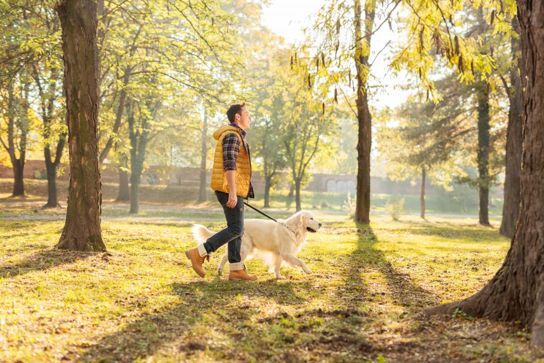 homme promenant son chien dans le parc