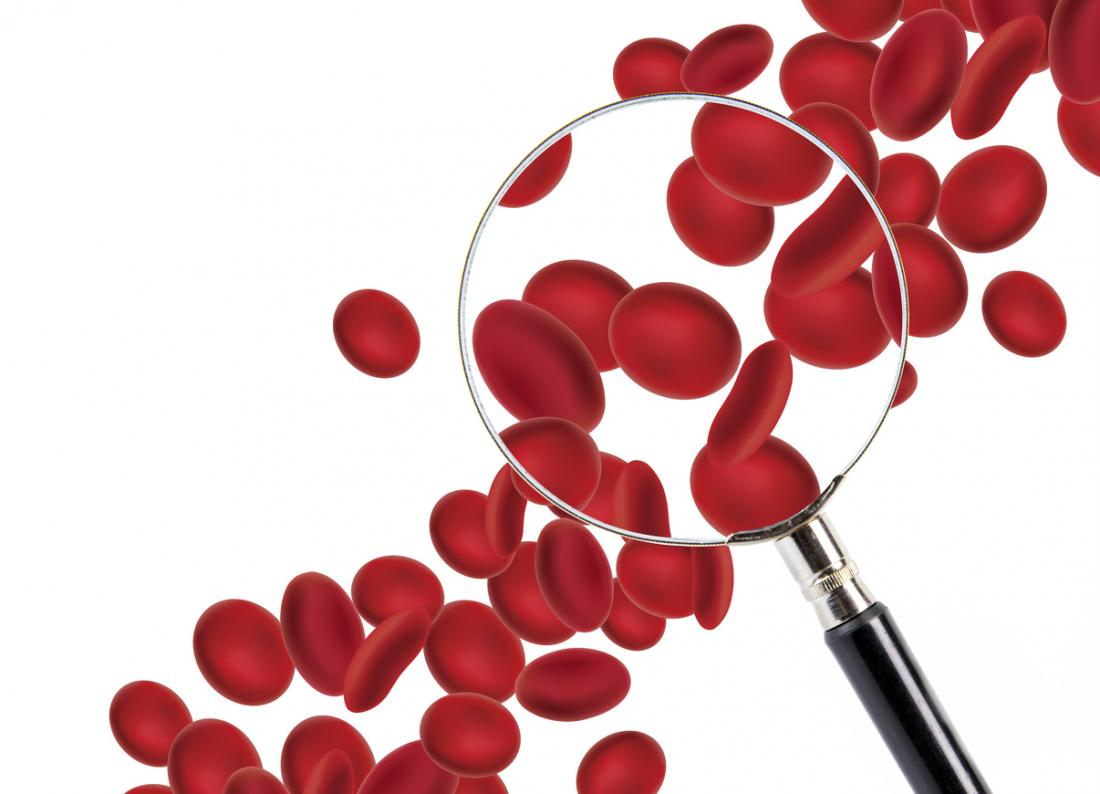 3D render của các tế bào máu đang được kiểm tra với một kính lúp.