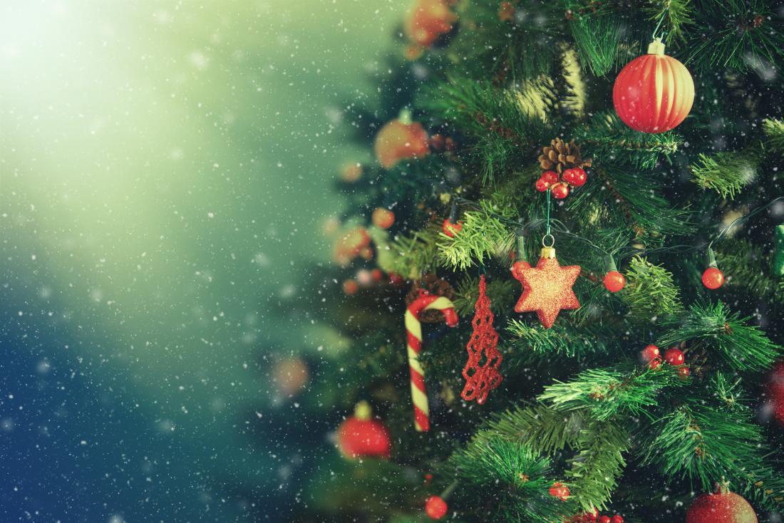 Alergia a árvore de natal