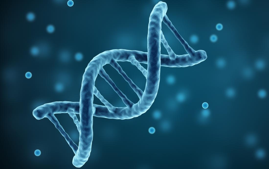 Brin d'ADN.