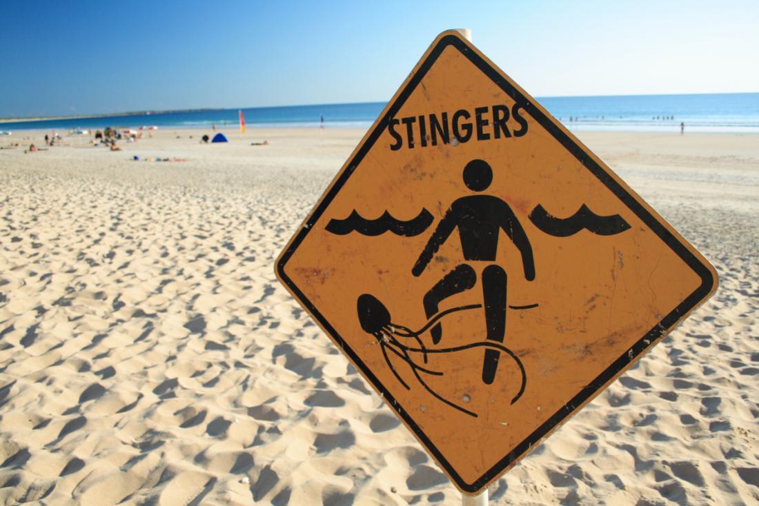Unterzeichnen Sie auf einem Strand, der über Quallenstiche warnt.