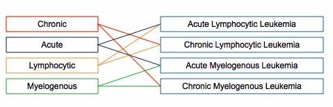 白血病の種類の図