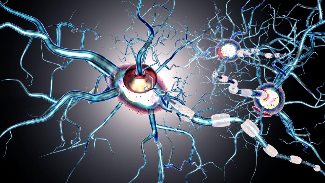 多発性硬化症は神経細胞に作用する