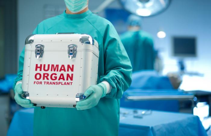 човешки орган за трансплантация