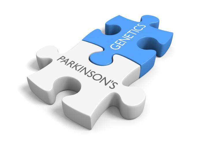 Parkinson-und Genetik-Puzzle-Teile.