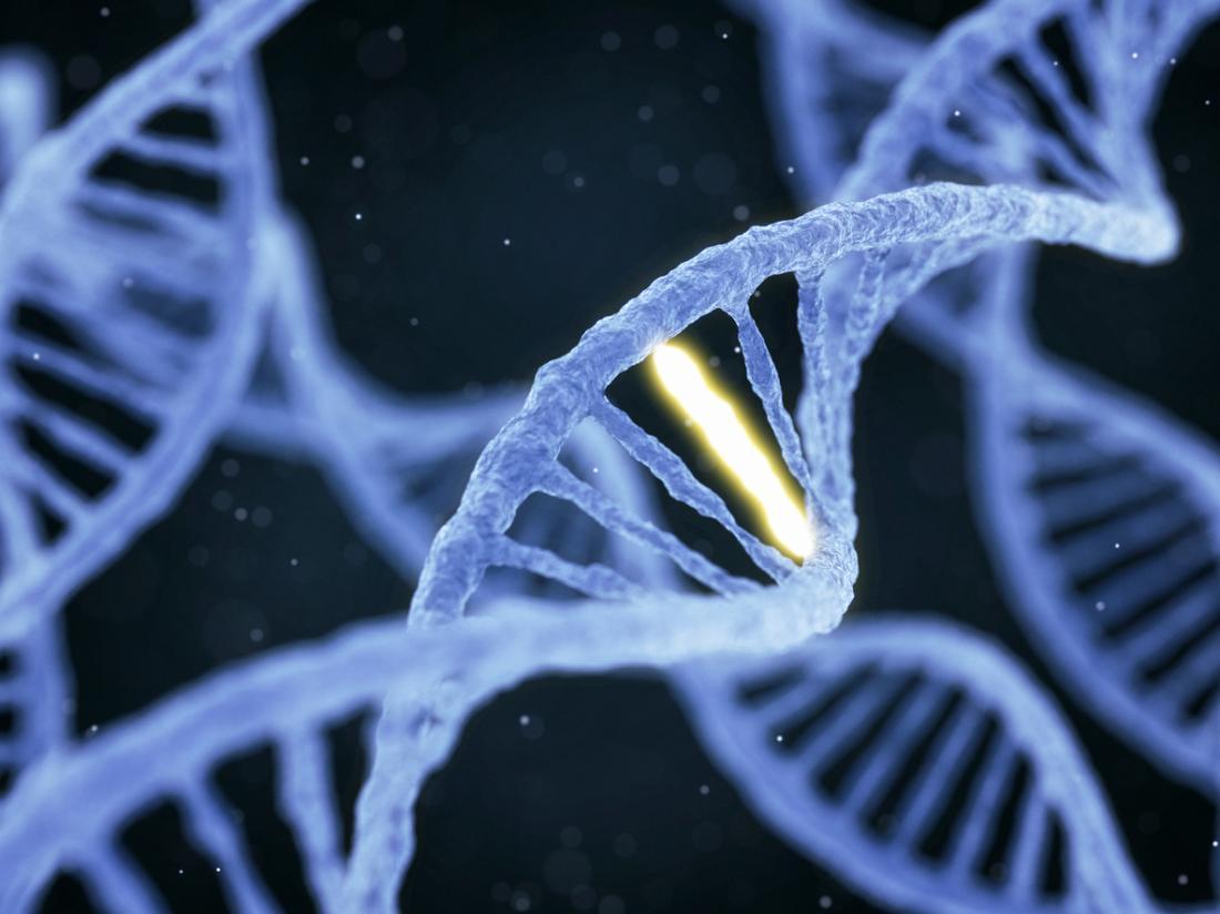 illustrazione del DNA