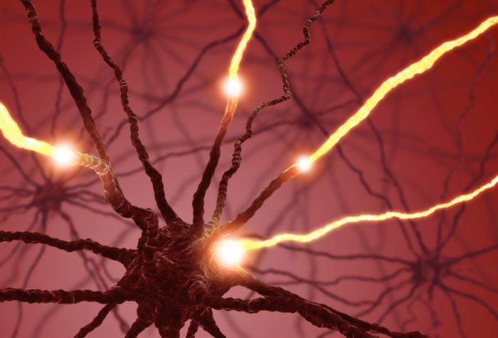 Impulso delle cellule nervose