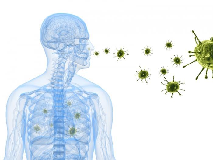Nhiễm virus