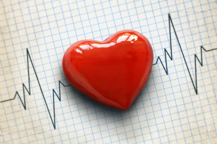 [rotes Herz und Kardiogramm]
