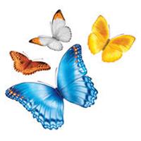 myChildrens-Logo