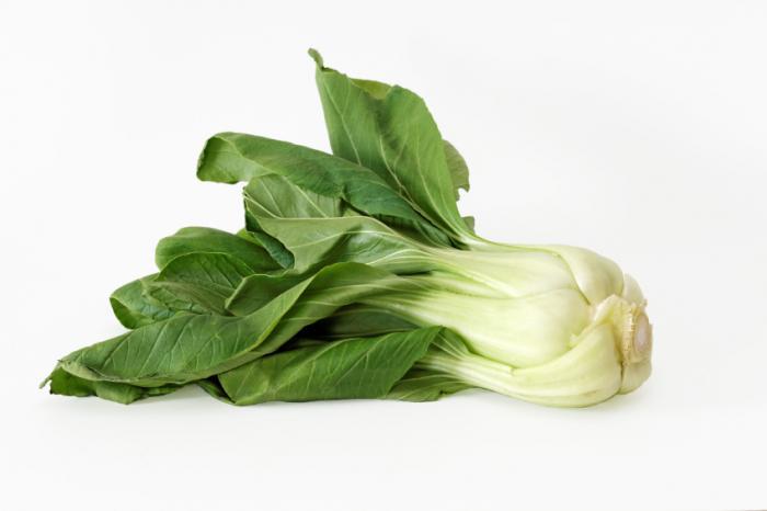 [チンゲン菜]