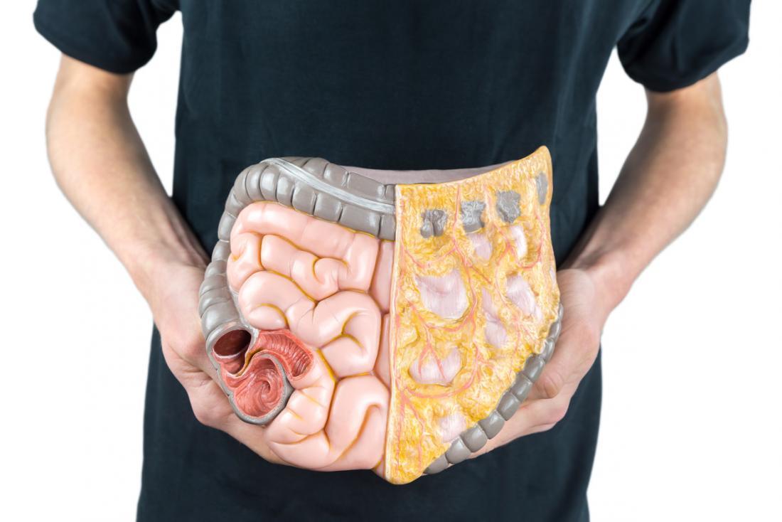 人間の消化器系のモデルは、黒いシャツで男の体のどこにあるのかを把握している。