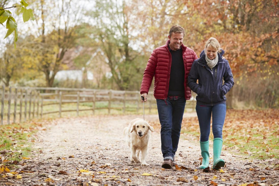 心臓の動悸を止めるのに役立つかもしれない森の犬を歩いているカップル