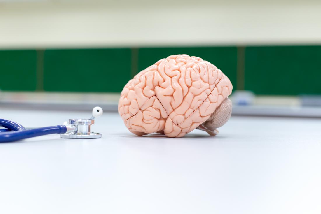 Model mózgu ze stetoskopem do zademonstrowania prostych napadów częściowych.