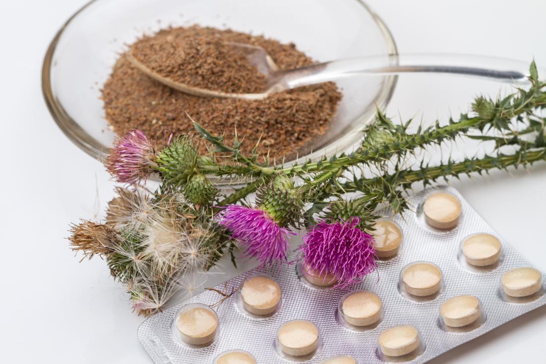 ミルクアザミの植物に粉末抽出物とサプリメントが含まれています。
