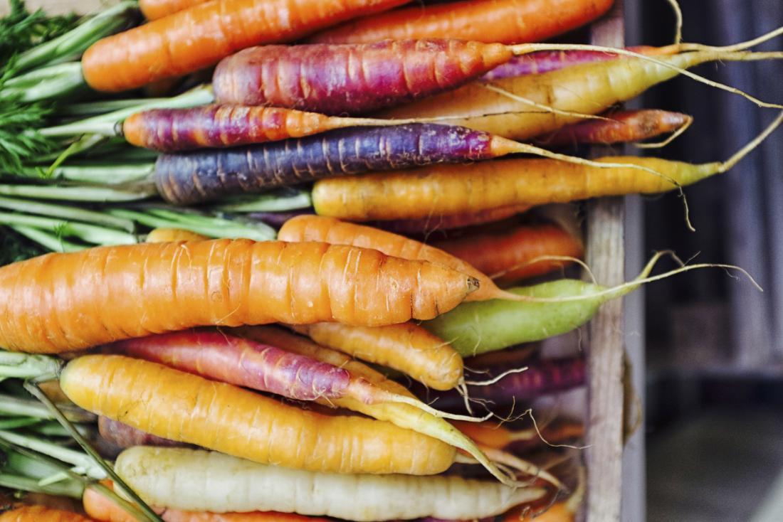 Cenouras contêm vitamina A