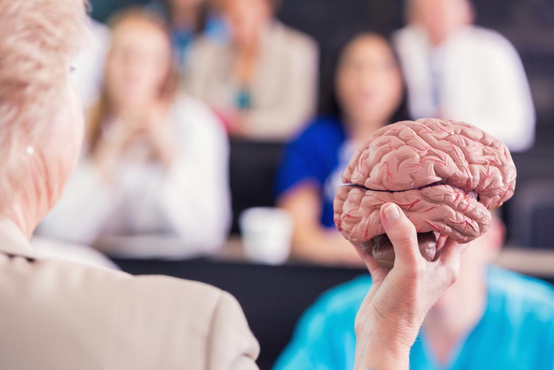 Professor que guarda o modelo do cérebro acima na frente dos estudantes de medicina na leitura.