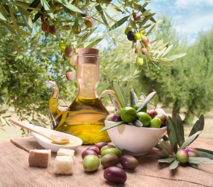 L'huile d'olive et un olivier