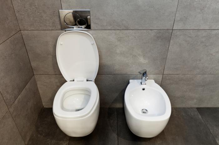 Um banheiro e um bidê.