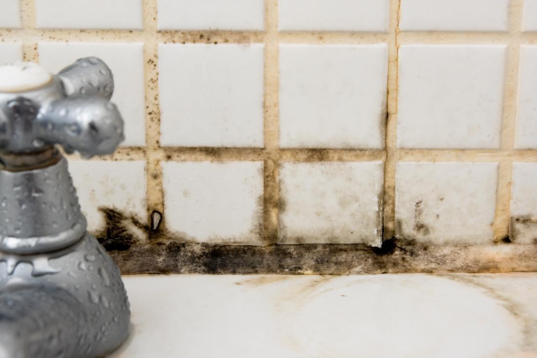 moule sur les carreaux derrière le robinet